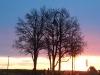 Sonnenaufgang von der Terrasse